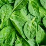 MIND Diet Spinach