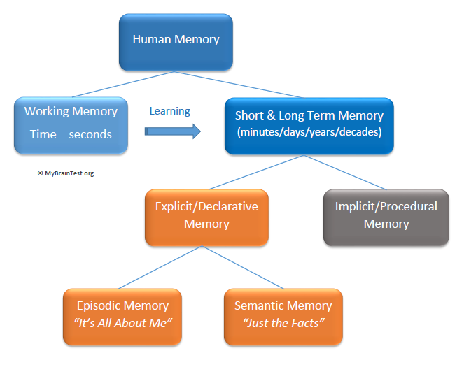 a discussion of the need for an explanation of human memory Need for more memory cues - as we get older, we need more cues, or triggers, to jog our memories for example, if you can't remember someone's name, visualize what the person looks like.